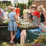 Hampton Court Flower Show - July 2017 - Blondes Have More Fun thumbnail