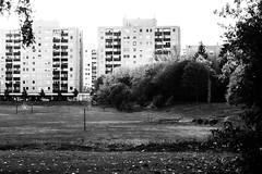 Panel buildings (max tuguese) Tags: building black white bianco nero blanc noir noiretblanc monochrome photographer maxtuguese 50mm f2 nikon nikkor flickr outdoor dark schwarz weis d3400 view architecture cityscape