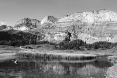 Arvenseeli (Rosmarie Voegtli) Tags: arvenseeli lake see bergsee sunnbühl berneroberland hiking water blackandwhite mountains reflections fromsunnbültogemmi