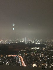 View from the 57th floor (carrieegibson) Tags: travel photography japan architecture tokyo