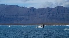 2018.08.10-15.42.23 (Pak T) Tags: aquaticvehicle volcanicash bustour glaciallake glacierlagoon iceberg iceland jokulsarlon jökulsárlón