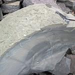Seismite horizon (upper Fairview Formation, Upper Ordovician; Maysville West roadcut, Kentucky, USA) 2 thumbnail