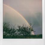 Roid Rainbow 2 thumbnail