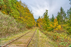 Autumn Series (Per@vicbcca) Tags: autumn sony ilce7m2 a7ii vancouverisland britishcolumbia canada shawniganlake color colour colores