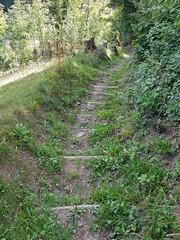 Wilderswil scenes 111 (SierraSunrise) Tags: switzerland wilderswil europe path trail
