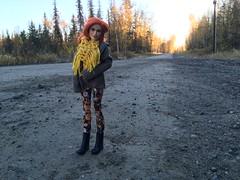 Long Road At Dawn (branbeckman) Tags: beckylynch offroad dollphotography jeep solitude alaska