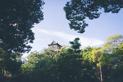 Hiroshima Castle (flrent) Tags: hiroshimajō 広島城 hiroshima japan carp castle 城 rijō