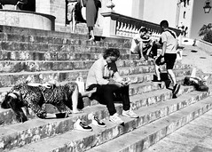 (nkabessa) Tags: street photography sintra palace turists hot relaxing couple siesta
