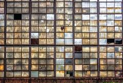Windows Latest Update (rickhanger) Tags: urbex urbanexploration urban urbandecay windows abandoned abandonedfactory abstract