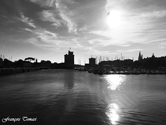 LR en monochrome By François Tomasi (François Tomasi) Tags: monochrome blackandwhite noiretblanc larochelle villedelarochelle charentemaritime sudouest atlantique france europe french port portdelarochelle tours tour sombre dark lights light lumière iso filtre digital numérique sun soleil ciel sky clouds cloud nuages nuage pointdevue pointofview pov photo photographie photography photoshop automne octobre 2018 oiseau bird patrimoinedefrance architecture travel voyage tourisme reflection eau mer sea océan water borddemer justedutalent yahoo google flickr françoistomasi tomasiphotography