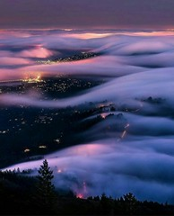 Mount Tamalpais, California (katalaynet) Tags: follow happy me fun photooftheday beautiful love friends