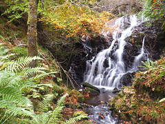 The end of the trail. (Flyingpast) Tags: waterfall water wet rocks autumn autumnal leaves ferns walk outdoors scotland scottish uk beautiful highlands pretty perthshire rugged wild