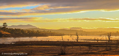 0765-Sunrise Lake Eildon Victoria (Peter.Stokes) Tags: australia australian colour landscape nature outdoors photo photography mansfield au