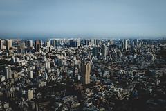 Toyko City View (Eric Anthony Balsamo) Tags: tokyo cityscape fuji japan x100f fujifilm buildings skyscraper