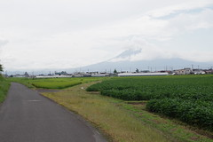 Mt. Iwaki with the cloud muffler (しまむー) Tags: pentax k30 smc fa 43mm f19 limited tambow art inakadate village 田舎館村 田んぼアート