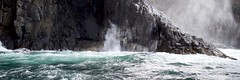 cold and wet (daniel_james) Tags: 2018 canon6d canon1635mm brunyisland tasmania australia southernocean brunyislandcruise 31 seaspray dolerite wild wet