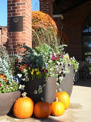 Wheaton, IL, Cantigny Park, Visitor Center Main Entrance, Fall Decorations (Mary Warren 11.4+ Million Views) Tags: wheatonil cantignypark nature flora plants leaves foliage fall wagon park garden pumpkins planters chrysanthemums orange bricks