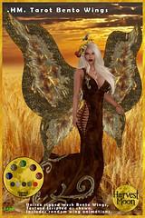 Harvest Moon -Tarot Bento Wings (honeyheart1) Tags: wing wings fairy fae eagle bird pagan neopagan witch magician roleplay sl secondlife harvestmoon