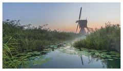 Get low (Rob Schop) Tags: wideangle zonsopkomst grootammers sunrise hoyaprofilters sonya6000 molens nederland outdoor prime ochtend morning samyang12mmf20 windmill a6000 f56 handhold landscape