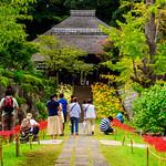 Main gate of Saihoji Temple : 西方寺三門 thumbnail
