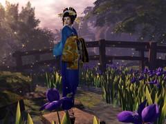 Au revoir summer... (LiangScorpio) Tags: sl secondlife sunmer iris flowers fireflies kimono oiran bluelotus tomoto catwa maitreya poem