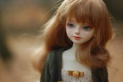 10 Years (simply hagata) Tags: bjd balljointeddoll doll msd luts kiddelf litchi autumn fall freckles leaves
