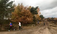 haarlerbergloop 10 km (54)