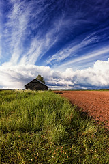 Tiny Barn House By The Summer Fields (k009034) Tags: 500px wooden copy space finland matkaniva oulainen tranquil scene agriculture barns building clouds countryside farm farming fields grass green nature no people old rural sky summer tree teamcanon copyspace tranquilscene nopeople