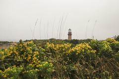 _MG_8992 (Sopranova) Tags: menemsha oakbluffs vineyardhaven aquinnah lighthouse newengland ferry massachusetts marthasvineyard island boat ocean atlantic beach campground yoga edgartown
