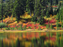 Autumn at Picture Lake in WA (Landscapes in The West) Tags: artistpoint northcascadesnationalpark mountbakersnoqualmienationalforest washington pacificnorthwest landscape west picturelake autumn