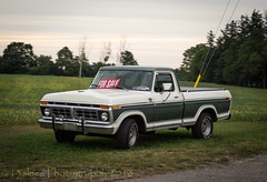 For Sale (HTT) (13skies (Physio)) Tags: singleshothdr forsale truckforsale htt thursday ford cool old spiffy antique classic pickuptruck happytruckthursday grass greatshape wheels grill headlights