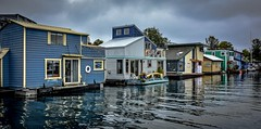 Idyllic float home community (Christie : Colour & Light Collection) Tags: floathomes scenic idyllic calm serene fishermanswharf victoria canada british columbia homes houses quaint ocean victoriaharbour harbour outdoors cloudy rain overcast nikon nikkor18105mm boat dock community floathomecommunity reflections reflection waterreflection pacificnorthwest fishermanswharfvictoria