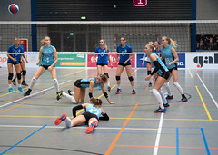 4A132718 (roel.ubels) Tags: volleybal eredivisie talent team papendal valkenhuizen sport topsport pharmafilter us tt 2018 volleyball indoor