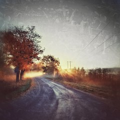 Intermission (Stefano Rugolo) Tags: stefanorugolo huaweip9lite snapseed intermission sunrise backlight mist edit textures light tones mobilephotography road tree grass sky
