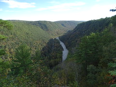 Colton Point State Park - Pine Creek Gorge (jaci starkey) Tags: 2018 pennsylvania stateparks nature canyon creeks
