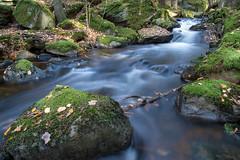stream (englishgolfer) Tags: stream water long exposure sweden sverige bohuslän autumn fall höst nikon d7500 tamron 1750mm