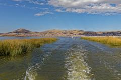 0G6A2025_DxO (Photos Vincent 2011 and beyond) Tags: pérou peru puno titicaca uros ile isla island lake lago lac bolivie lapaz