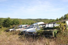 Épave: Citroën Méhari, Ford Taunus, Renault 4F4, Dauphine (MilanWH) Tags: épave citroën méhari ford taunus renault 4f4 4l 4 dauphine