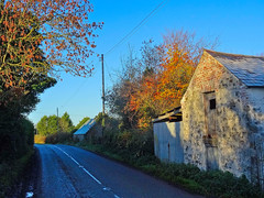 Frosty morning, County Antrim. N.Ireland (Trevor Lawrence Photos Northern Ireland) Tags: frosty morning randalstown old barns blue sky rising sun autumn leaves