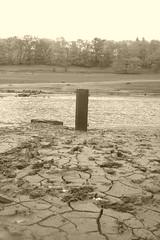 Old gatepost opposite Derwent Hall, Ladybower     November 2018 (dave_attrill) Tags: remains village derwent ladybower reservoir gatepost sepia peakdistrict nationalpark derbyshire hopevalley november 2018