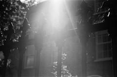 Ranelagh Rooms (Poinciana82) Tags: 50mmf18 ae1 film trix400 dublin ireland