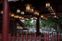 lantern (ababhastopographer) Tags: osaka tennnouji shitennouji uemaci turtlewellshrine 大阪 天王寺 四天王寺 亀井堂 常夜燈