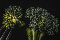 Broccoli (Hanna Tor) Tags: food foodphotography hannator art vegetable tasty cooking macro macromondays bfood