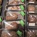 Frische selbstgemachte mit Schokolade überzogene Früchte in einem Supermarkt - Äpfel und Birnen