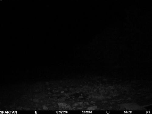 2018-11-01 02:00:03 - Crystal Creek 2