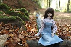A blanket of autumn leaves (Ninotpetrificat) Tags: leaves dd dollfie dollfiedream dollclothes denim fall cesta volks yukino yukino2daver asiandolls japandolls dolls hobby cute kawaii otoño herbst toys