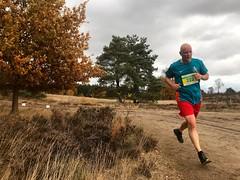 haarlerbergloop 10 km (65)