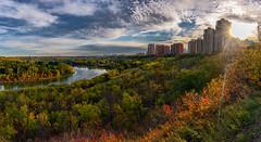 Jasper Ave view Edmonton (Judith A. Gale) Tags: yeg edmonton alberta canada fallcolours cityscape canadabeautyartlovelandscapecityurbantreesbuildingsparks art sublime