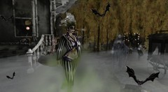 I used to roll the dice (NefrytkaResident) Tags: halloween creepy beetlejuice movie women men sl secondlife second life skin hairs costume fancy horror stripes outfit clothes eyes shoes rotten moss monster dead irrisistible maitreya belleza slink hourglass tonic aesthetic signature omega appliers mesh autumn make up gothic girl firestorm irrisistibleshop isissecretspy catwaclip catwa bento emiter fog skeleton hair pant jacket belt event events swankevent pinkicrystal mystictimbers