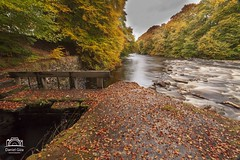 River Tilt, Blair Atholl (Daniel Giza) Tags: river tilt blair atholl autumn colours water waterfall tree landscape scotland perthshire rock stream canon 50d sigma 1020 sky wood forest grass